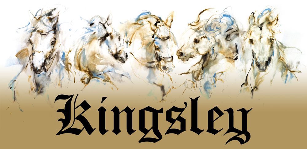 Kingsley Footwear website